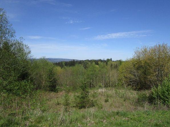 null bed null bath Vacant Land at 135 Tybren Heights Rd Kelso, WA, 98626 is for sale at 38k - 1 of 7