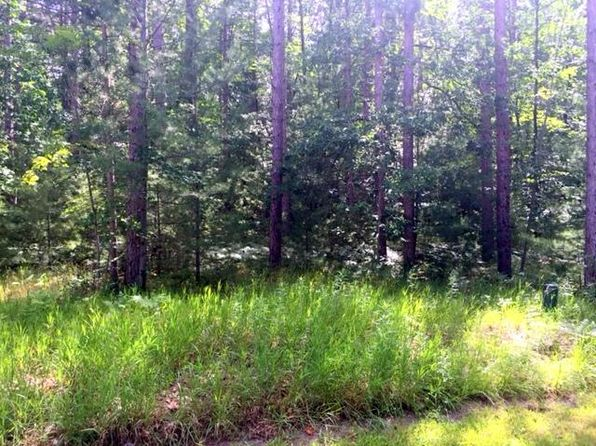 null bed null bath Vacant Land at 6330 Link Blvd Indian River, MI, 49749 is for sale at 22k - 1 of 6
