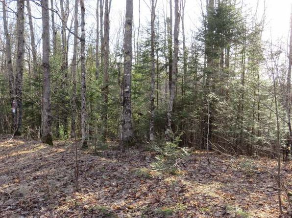 null bed null bath Vacant Land at  Wildcat Rd Presque Isle, WI, 54557 is for sale at 43k - 1 of 9