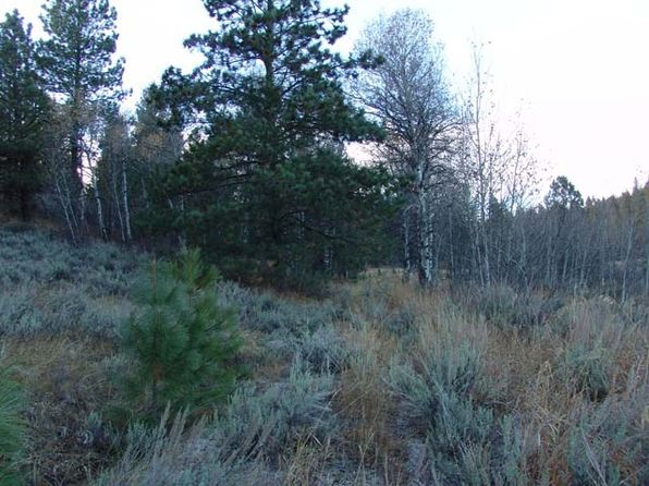 null bed null bath Vacant Land at 4 Maria Kalea St Cascade, ID, 83611 is for sale at 82k - 1 of 7