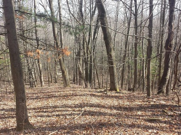 null bed null bath Vacant Land at 39 Acre Wooded Athens, PA, 18810 is for sale at 127k - 1 of 2