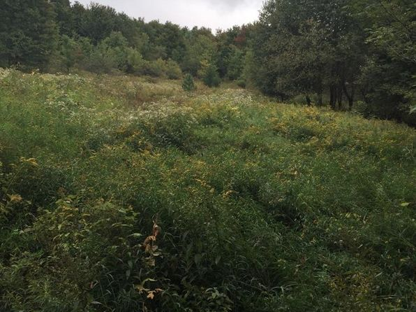 null bed null bath Vacant Land at  Ridge Rd Franklin, NY, 13775 is for sale at 69k - 1 of 13