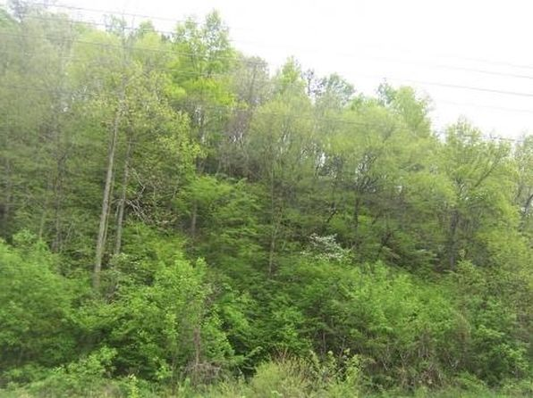 null bed null bath Vacant Land at 0 Jones Cove Rd/Chavis Rd N Sevierville, TN, 37722 is for sale at 55k - 1 of 6