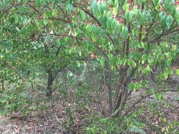null bed null bath Vacant Land at 15/172 Woodhaven Sublette, IL, 61367 is for sale at 5k - 1 of 2