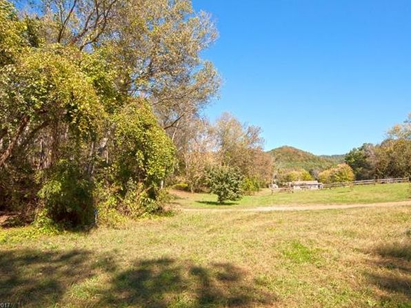 null bed null bath Vacant Land at  Tbd River Rd Hot Springs, NC, 28743 is for sale at 49k - 1 of 9