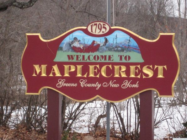 null bed null bath Vacant Land at 0 Hilltop Dr Maplecrest, NY, 12454 is for sale at 65k - 1 of 10