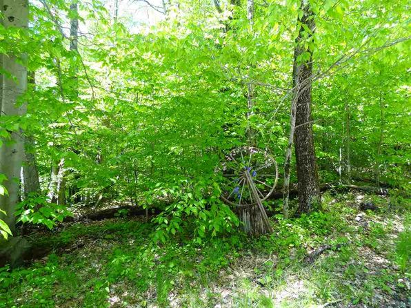 null bed null bath Vacant Land at 00 Old Tiffany Road Rd Mount Holly, VT, 05758 is for sale at 49k - 1 of 8