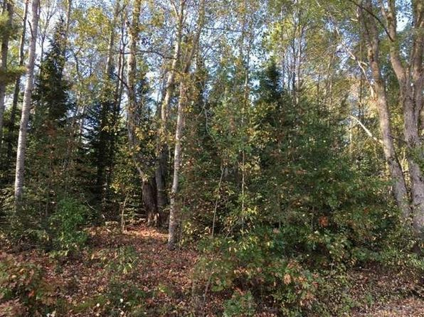null bed null bath Vacant Land at 0 Ford Rd Evart, MI, 49631 is for sale at 82k - 1 of 3