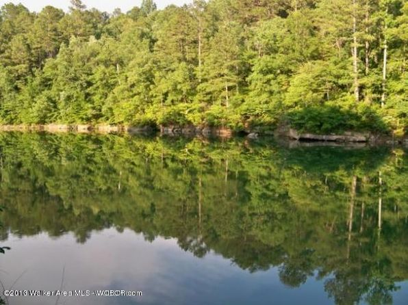 null bed null bath Vacant Land at  Lot # 3 Winding Crk Arley, AL, 35541 is for sale at 110k - 1 of 2