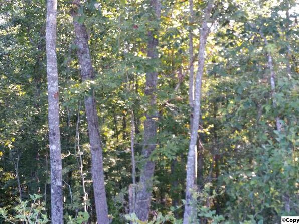 null bed null bath Vacant Land at 1088 County Road 788 Ider, AL, 35981 is for sale at 91k - 1 of 3