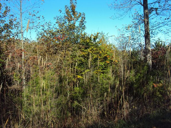 null bed null bath Vacant Land at 1314 Crest Dr Smithville, TN, 37166 is for sale at 40k - 1 of 2