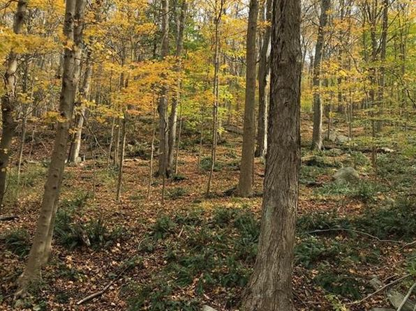 null bed null bath Vacant Land at 82 WICCOPEE RD PUTNAM VALLEY, NY, 10579 is for sale at 89k - 1 of 2