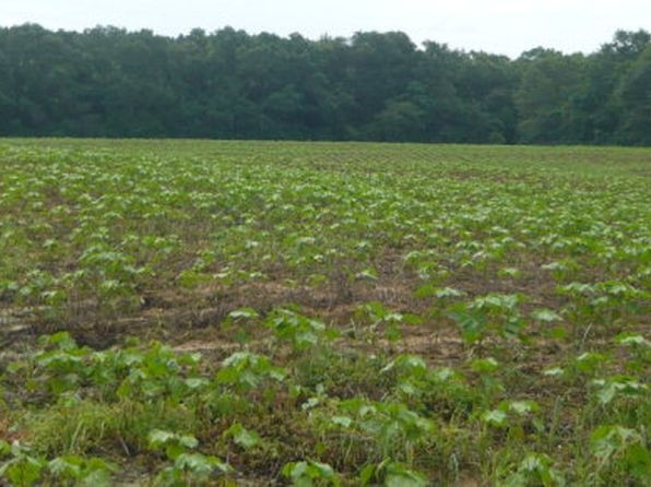 null bed null bath Vacant Land at 43 Ac Cr Kinston, AL, 36453 is for sale at 108k - 1 of 45