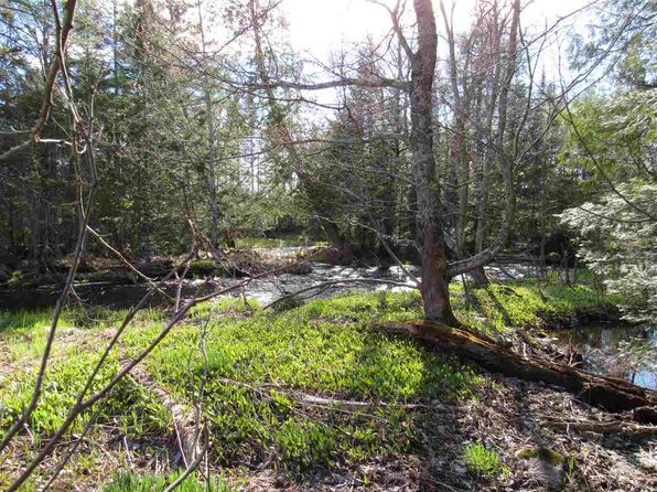 null bed null bath Vacant Land at  Tbd (West) Covington, MI, 49919 is for sale at 200k - 1 of 30