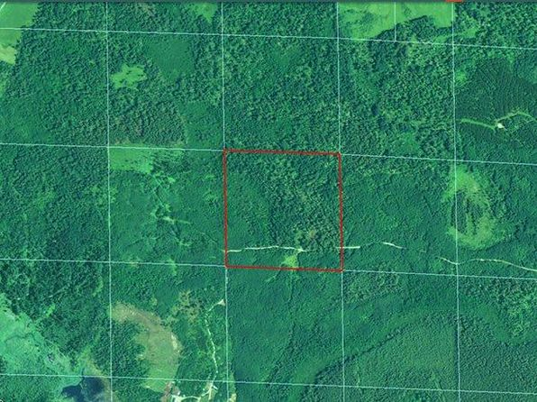 null bed null bath Vacant Land at  Tbd Hwy Angora, MN, 55703 is for sale at 42k - 1 of 3