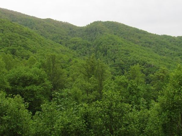 null bed null bath Vacant Land at 0 Brush Crk Bryson City, NC, 28713 is for sale at 40k - google static map