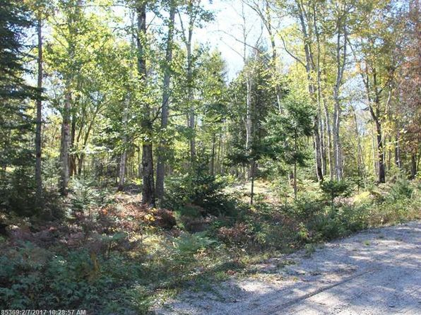 null bed null bath Vacant Land at 1 Carter Farm Ln Surry, ME, 04684 is for sale at 49k - 1 of 5