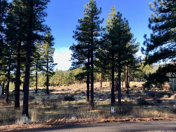 null bed null bath Vacant Land at 118 W Willis Ln Reno, NV, 89511 is for sale at 325k - 1 of 4