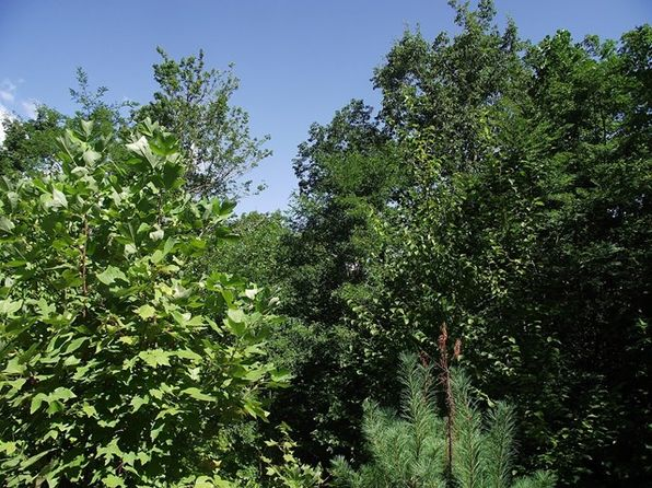 null bed null bath Vacant Land at JP Grant Rd Bryson City, NC, 28713 is for sale at 50k - 1 of 8