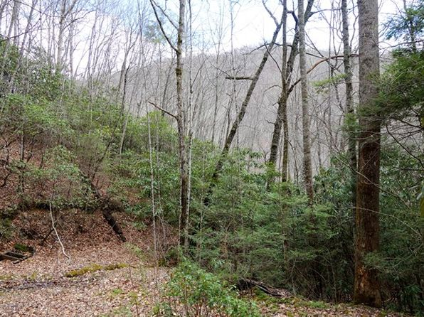 null bed null bath Vacant Land at  Brush creek Rd Bryson city, NC, 28713 is for sale at 299k - 1 of 21