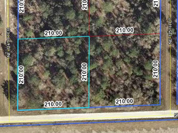 null bed null bath Vacant Land at 12451 NE 10th St Williston, FL, 32696 is for sale at 4k - google static map