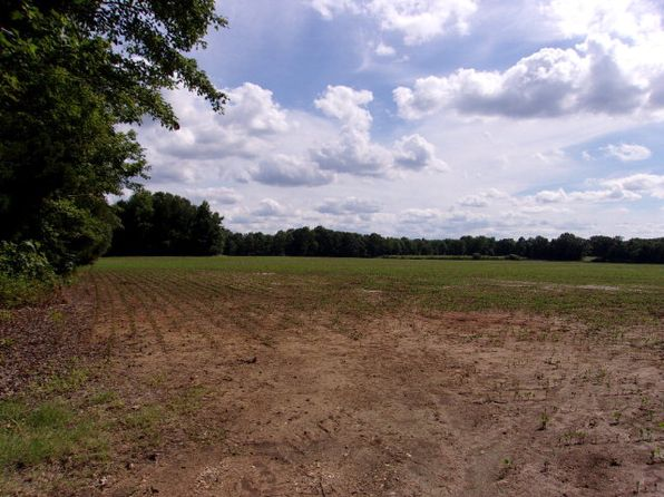 null bed null bath Vacant Land at 00 Old Homestead Rd Big Sandy, TN, 38221 is for sale at 236k - 1 of 3