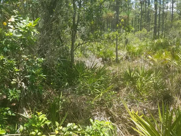 null bed null bath Vacant Land at 7707 E 257th St Myakka City, FL, 34251 is for sale at 219k - google static map