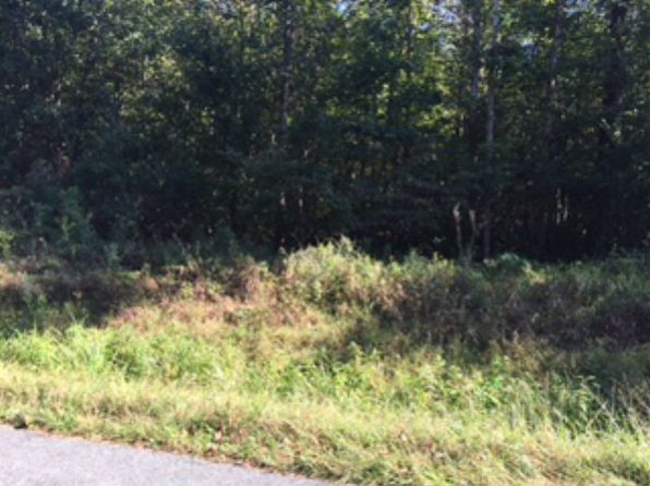null bed null bath Vacant Land at 671 Gold Mine Rd Palmyra, VA, 22963 is for sale at 60k - 1 of 6