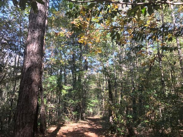 null bed null bath Vacant Land at 45 Ezell Rd Purvis, MS, 39475 is for sale at 267k - 1 of 11