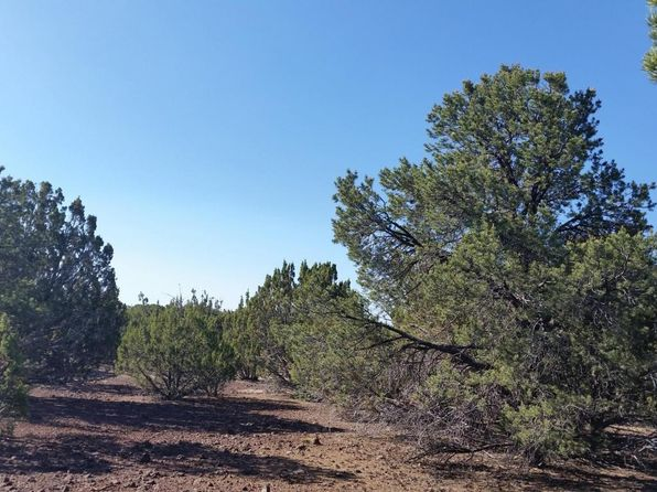 null bed null bath Vacant Land at 21 Mountain Pine Rd Vernon, AZ, 85940 is for sale at 49k - 1 of 5