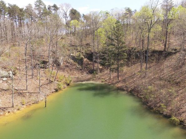 null bed null bath Vacant Land at  Osprey Ave Arley, AL, 35540 is for sale at 126k - 1 of 4