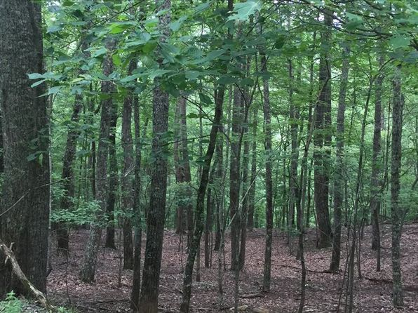 null bed null bath Vacant Land at 44 Gork Holler Rd Morganton, GA, 30560 is for sale at 18k - 1 of 6