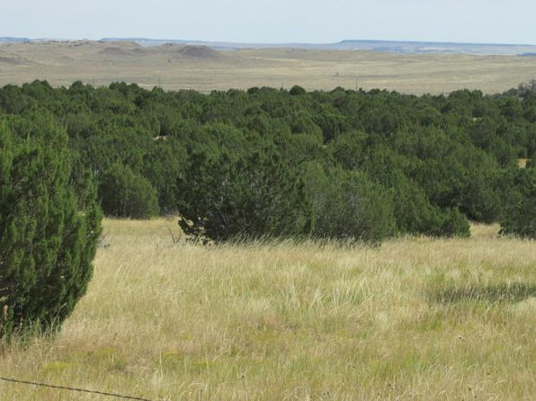 null bed null bath Vacant Land at  Silver Spurs Filing 4 Walsenburg, CO, 81089 is for sale at 40k - 1 of 3