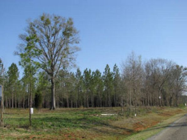 null bed null bath Vacant Land at  Cedar Creek Way Haddock, GA, 31033 is for sale at 45k - google static map