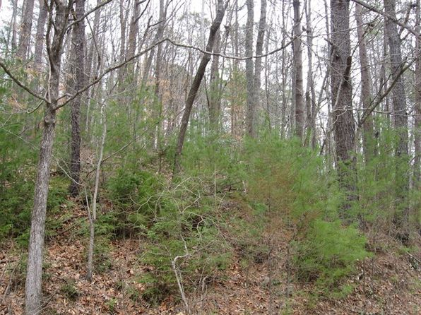null bed null bath Vacant Land at  Cheoah View Rd Bryson City, NC, 28713 is for sale at 35k - google static map