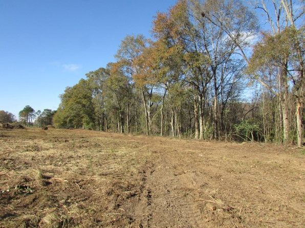 null bed null bath Vacant Land at 000 Ga Hwy 33n Moultrie, GA, 31768 is for sale at 40k - google static map