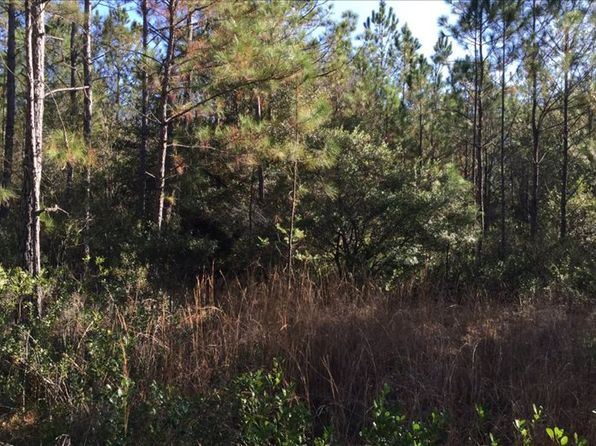 null bed null bath Vacant Land at  NE 194th Ct Lake Butler, FL, 32054 is for sale at 25k - 1 of 6