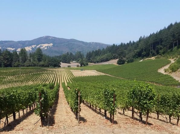 null bed null bath Vacant Land at 4430 Trinity Rd Glen Ellen, CA, 95442 is for sale at 2.90m - 1 of 6
