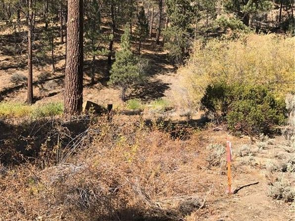 null bed null bath Vacant Land at 1230 Canyon Fawnskin, CA, 92333 is for sale at 49k - 1 of 4