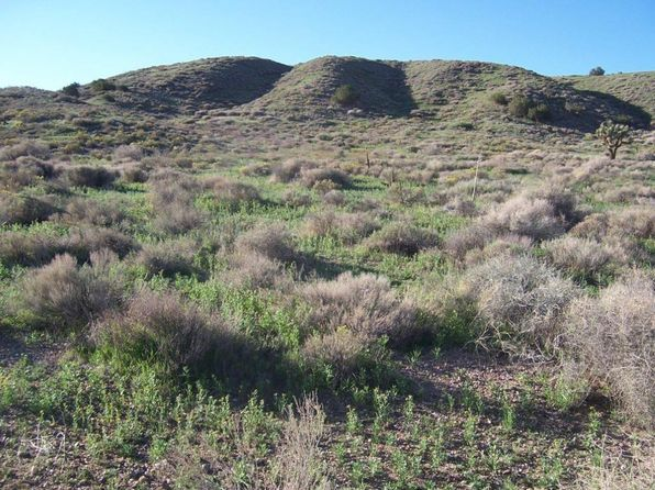 null bed null bath Vacant Land at  Carson Mesa Road Area Palmdale, CA, 93550 is for sale at 22k - 1 of 11