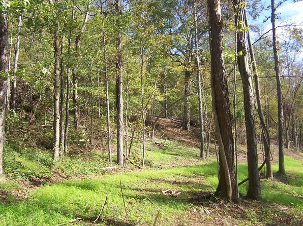 null bed null bath Vacant Land at 0 Weakley Creek Rd Pulaski, TN, 38478 is for sale at 56k - 1 of 15