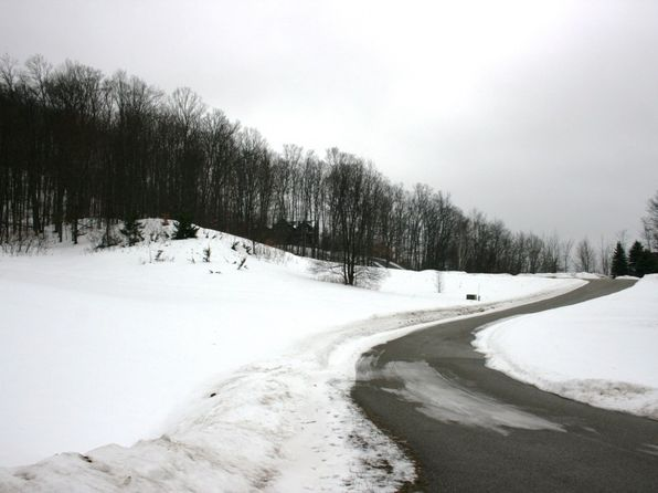 null bed null bath Vacant Land at  Tbd 39 Alta Traillot Boyne Falls, MI, 49713 is for sale at 48k - 1 of 6