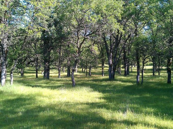null bed null bath Vacant Land at 11133 Oak Mesa Dr Auburn, CA, 95602 is for sale at 299k - 1 of 18