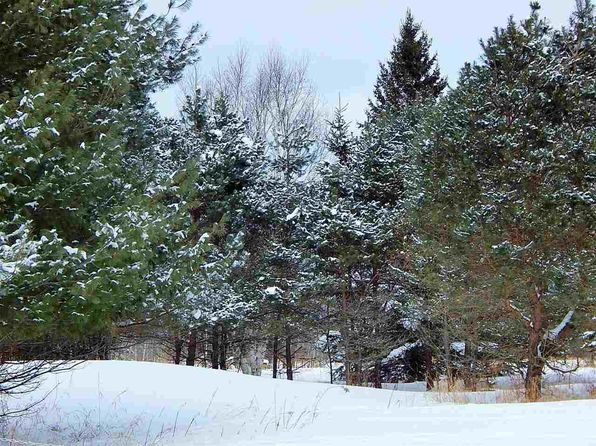 null bed null bath Vacant Land at 9439 Lakeview Rd Alanson, MI, 49706 is for sale at 700k - 1 of 5