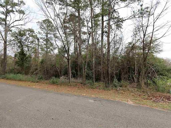 null bed null bath Vacant Land at  County Road 185 Jasper, TX, 75951 is for sale at 35k - 1 of 4