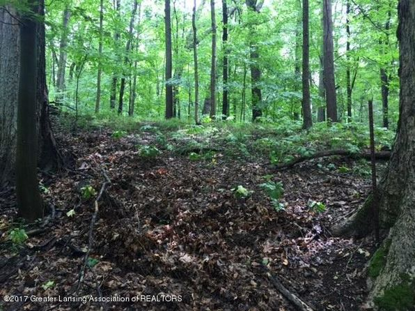 null bed null bath Vacant Land at 4103 Van Atta Rd Okemos, MI, 48864 is for sale at 93k - 1 of 14