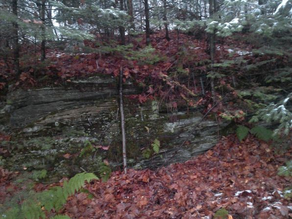 null bed null bath Vacant Land at  Maple Ln West Danville, VT, 05873 is for sale at 15k - 1 of 4