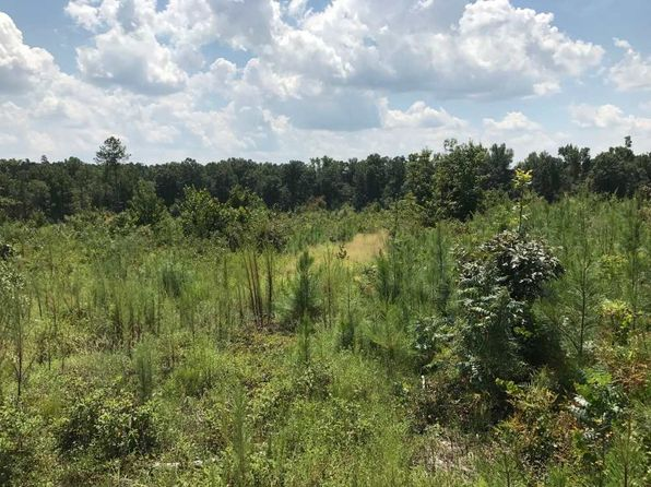 null bed null bath Vacant Land at 0 Hwy 25 Trenton, SC, 29847 is for sale at 830k - 1 of 9