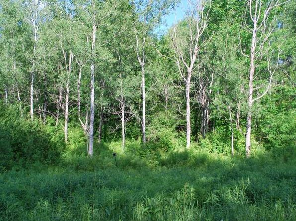 null bed null bath Vacant Land at ON Glacier Ridge Rd Crandon, WI, 54520 is for sale at 10k - google static map