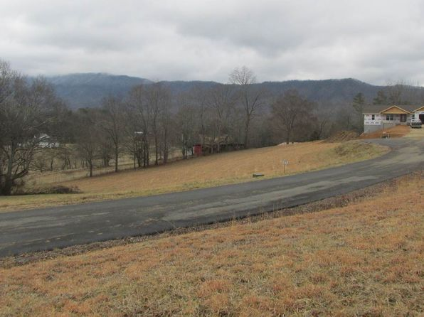 null bed null bath Vacant Land at  Buttercup Ln Newport, TN, 37821 is for sale at 42k - 1 of 5
